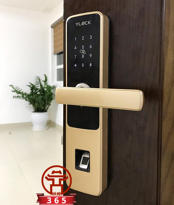 Bán khóa cửa thông minh Ylock YL-8870-G (Vân tây, Thẻ từ, Mật mã)