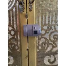 Khóa cổng sắt vân tay PHGlock FE38 chính hãng giá rẻ